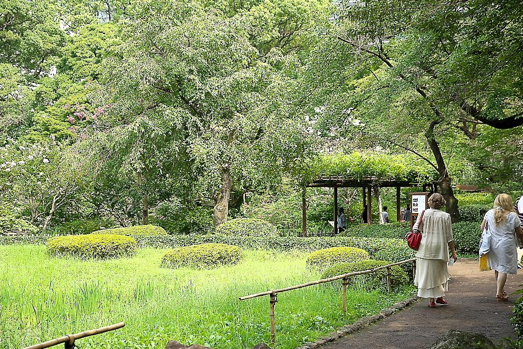 庭園の様子_1