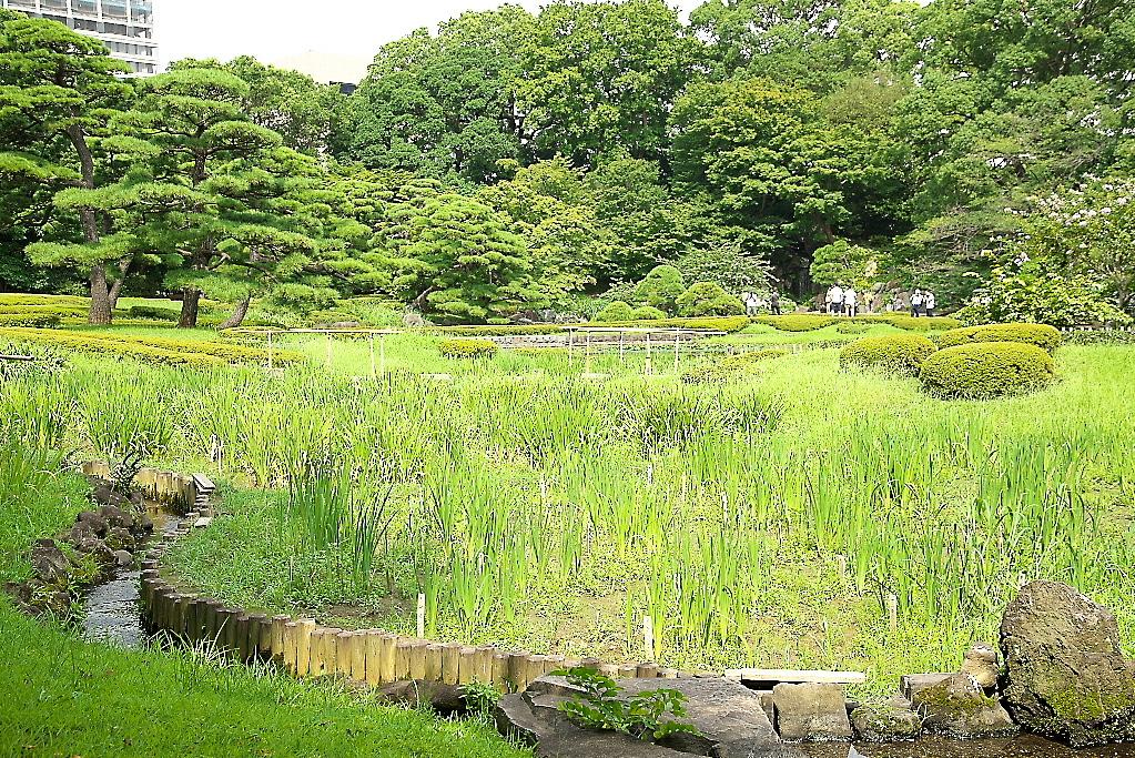 庭園の様子_2