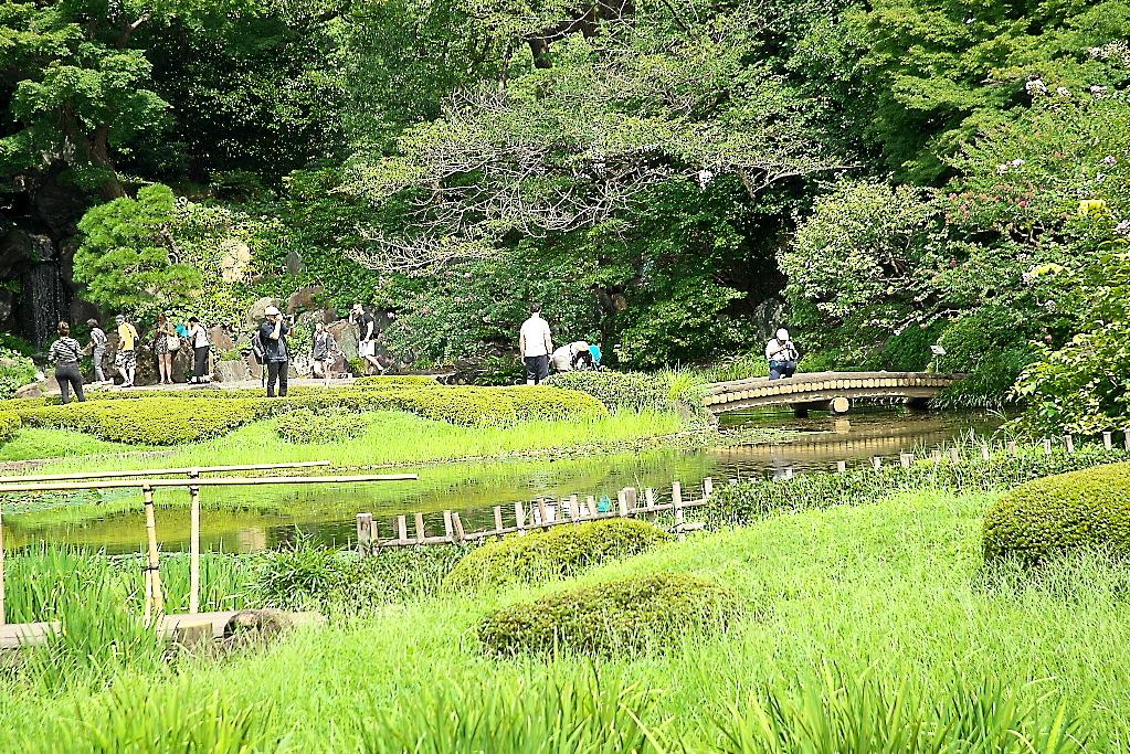 庭園の様子_3