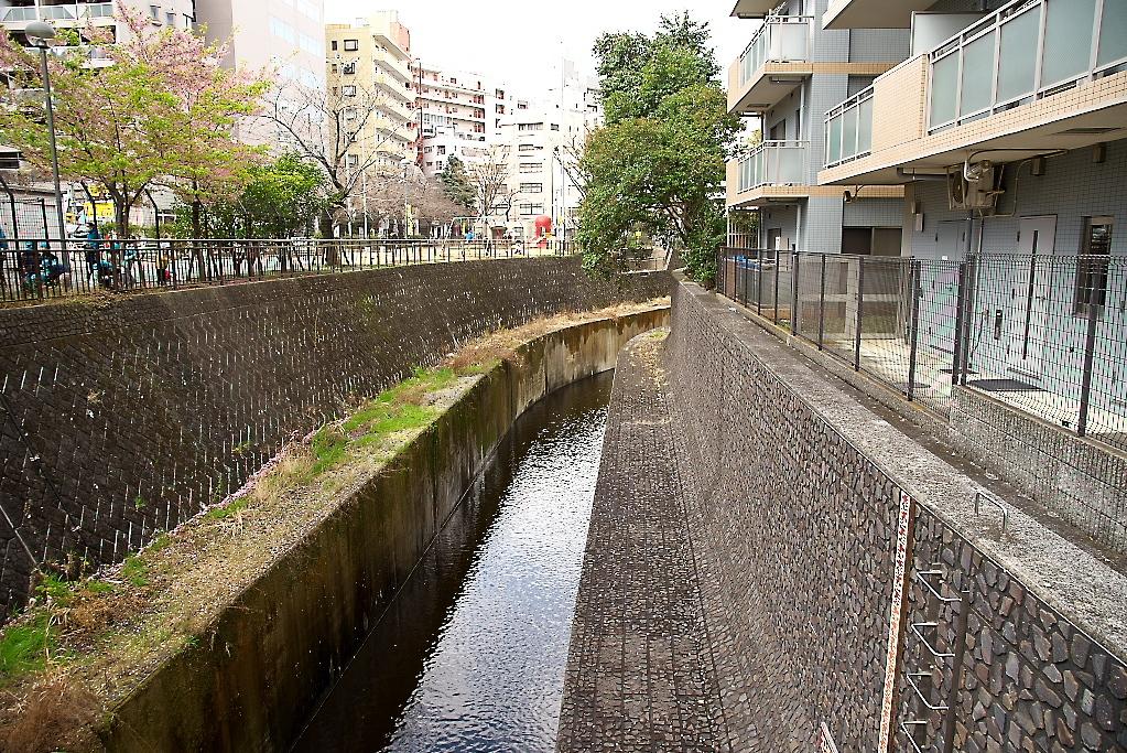 渋谷川の上流