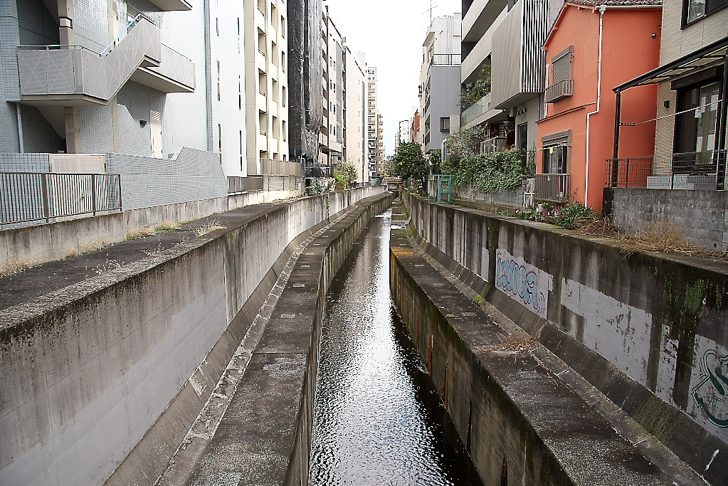渋谷川の下流