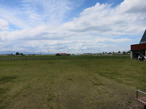 北欧の風 道の駅とうべつ 裏の芝生