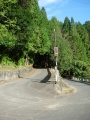 191102梅谷から西笠取方面へさらに上る
