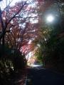 191123亀岡カントリー登坂中の紅葉1