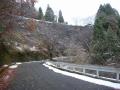191207広河原側から佐々里峠へ上って行く
