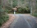191221三国越林道に合流