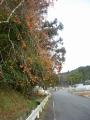 200111山田から田原方面に上って行く
