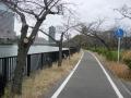 200201桜ノ宮公園付近を進む
