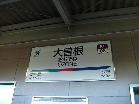 mt-ozone-1.jpg