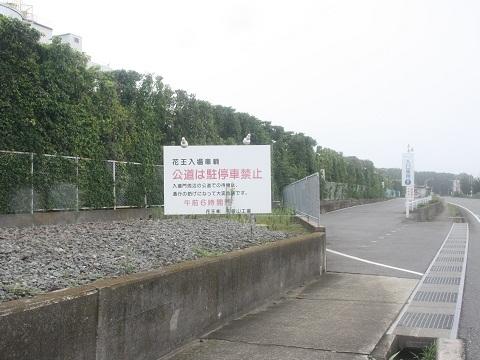 nk-wakayamako-11.jpg