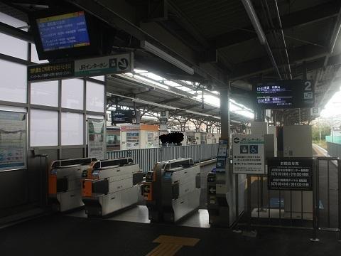 nk-wakayamashi-4.jpg