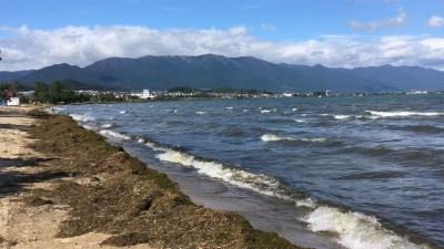 雨後の強風!! 真野浜から眺めた琵琶湖北湖は見渡す限り泥濁りです(YouTubeムービー)