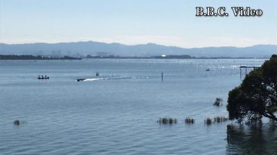 晴天微風の土曜日!! 穏やかな秋晴れの琵琶湖(YouTubeムービー)