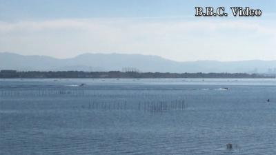 快晴微風!! ものすごくいい天気になった土曜日の琵琶湖(YouTubeムービー)