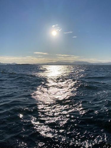 琵琶湖の初日(1月1日8時30分頃)