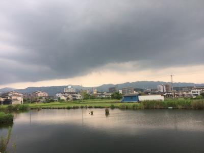 カヤ池から眺めた比叡山(8月19日14時30分頃)