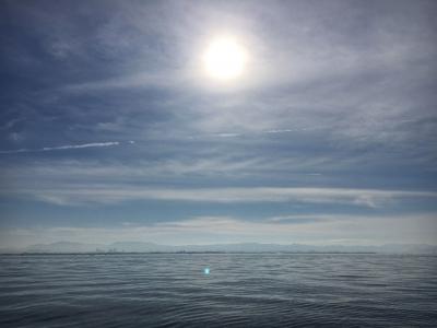 ベタナギの琵琶湖南湖(11月24日10時頃)