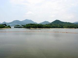 千丈寺湖の環境を守る条例でエンジン付きボート禁止の青野ダム