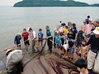 宮ヶ浜で開催された体験地引き網