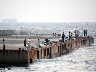 釣り人で賑わう浜金谷北港公共埠頭