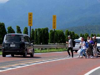 白髭神社前の国道を渡る観光客