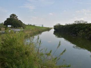 水抜きが行われる予定の用水路