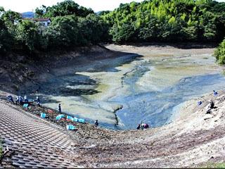 かいぼりのために水が抜かれた淡路島の溜め池