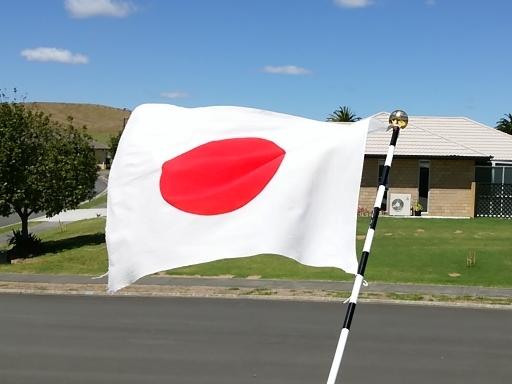japanflag1.jpg