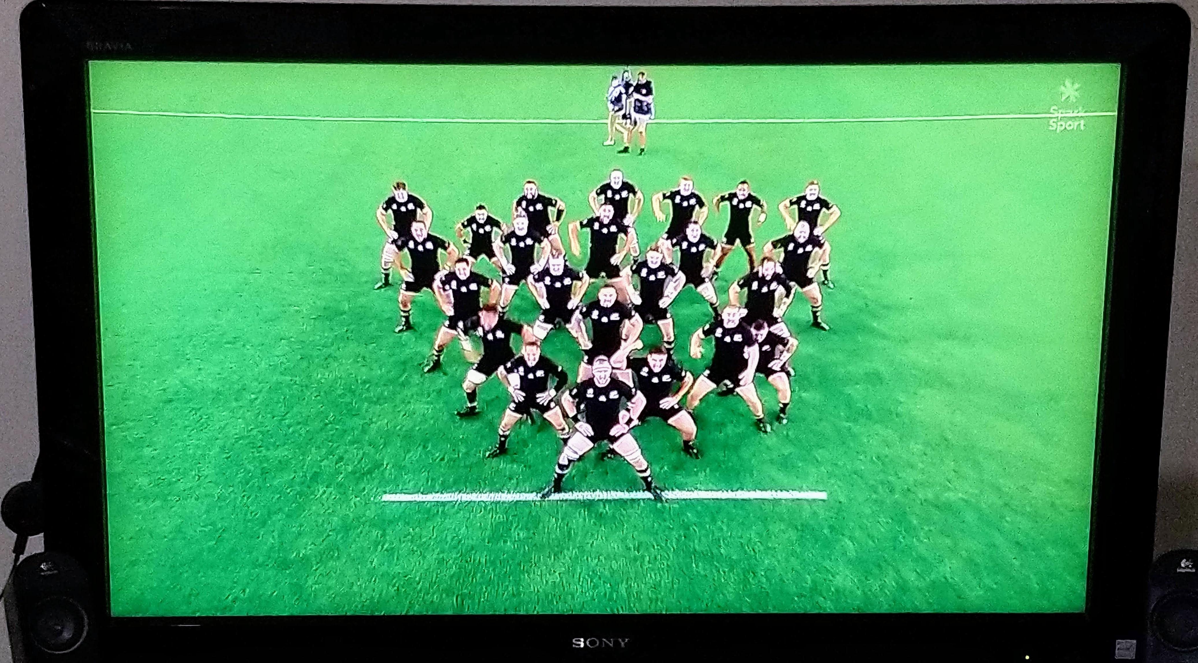 rugby2019haka1.jpg