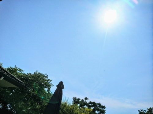 summer20201.jpg