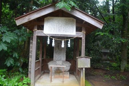 20190624大宮伊豆神社21