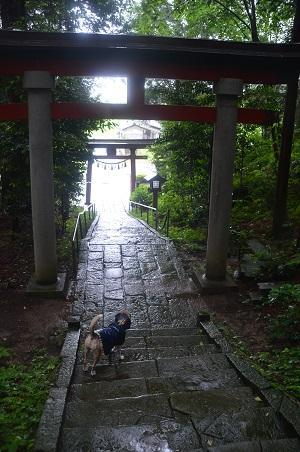 20190624菅船神社26