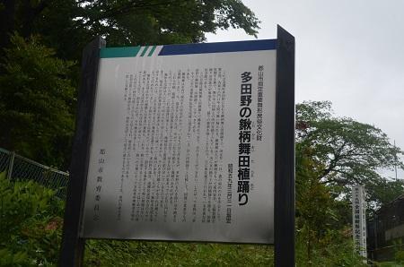 20190624多田野本神社08