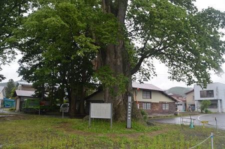 20190624中野小学校18