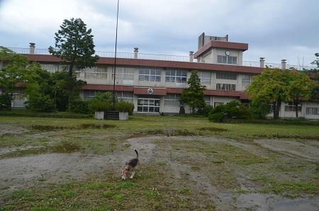 20190624福良小学校06