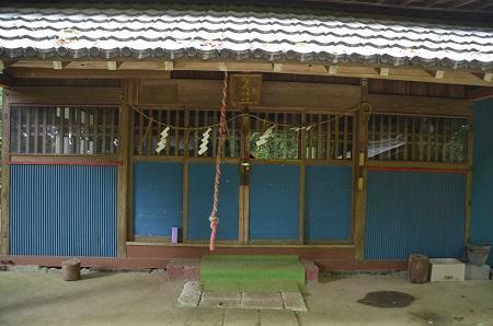 20190708賀茂神社の大杉14
