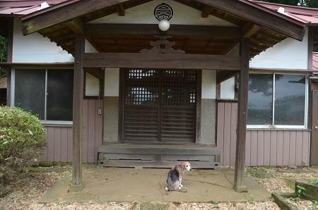 20190708高松入神社04