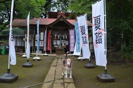 20190708富里香取神社06