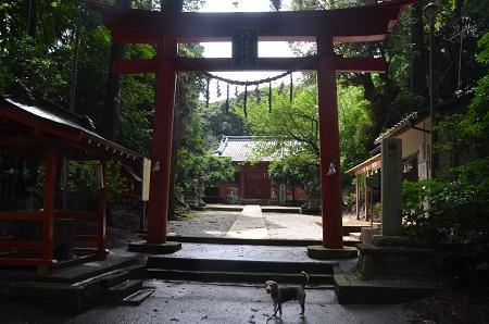 20190708成東八幡神社10