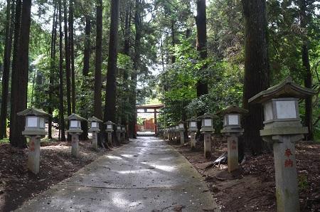20190708成東八幡神社07