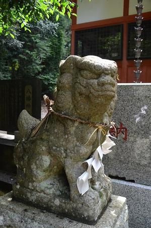 20190708成東八幡神社21