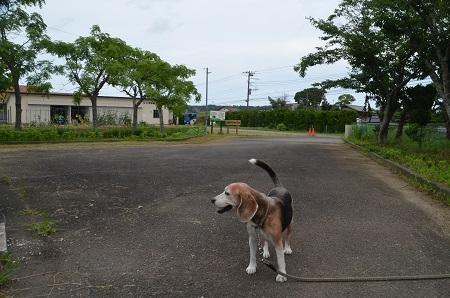 20190711旧・千町小学校10