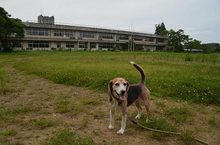 20190711千町小学校10