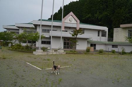 20190711瑞沢小学校18