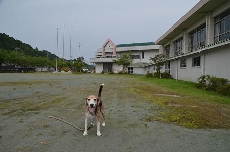 20190711瑞沢小学校19