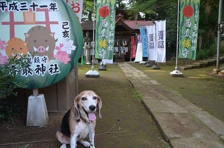 20190802富里香取神社06