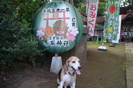 20190802富里香取神社05