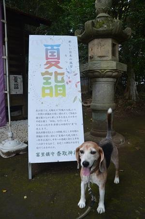20190802富里香取神社09