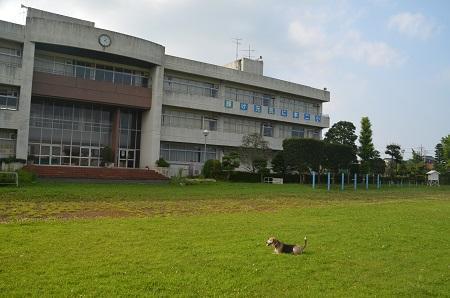 20190802本埜第二小学校08