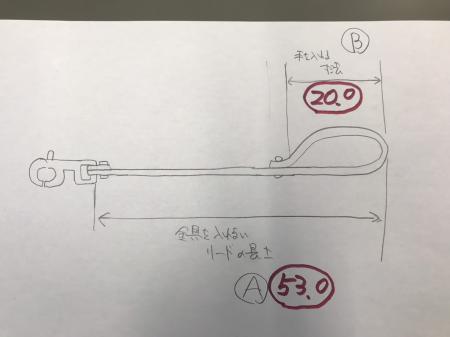 リード原図